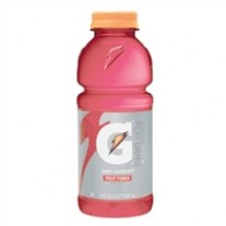 Gatorade Fruit Punch - 20oz